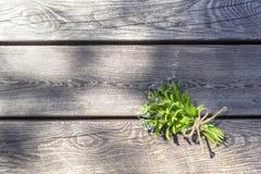 Небольшой букет голубых незабудок цветков в солнечном свете на старой коричневой деревянной предпосылке, экземпляр-космосе стоковое изображение rf