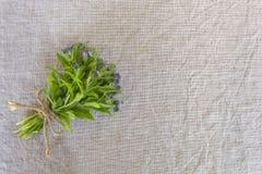 Небольшой букет голубых цветков ( forget-me-nots) на старой предпосылке ткани холста, экземпляр-космос стоковые фото