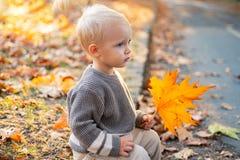 Небольшой малыш младенца на солнечный день осени Тепло и уют r Сладкие памяти детства Осень ребенка стоковое фото rf
