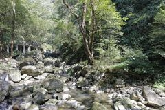 Небольшой тихий поток на камне sanqingshan живописной местности горы, самане rgb стоковые изображения rf
