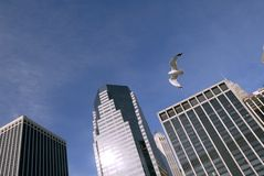 Небоскребы в Манхаттан Стоковое фото RF