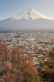 Небоскребы в Hino с Mt Furi Предпосылк-Япония Стоковые Фотографии RF