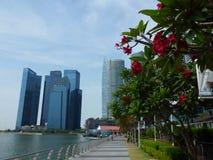 Небоскребы, Сингапур Стоковая Фотография