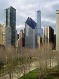 небоскребы chicago Стоковая Фотография RF