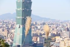 Небоскреб в Тайбэе, Тайване Стоковые Изображения RF