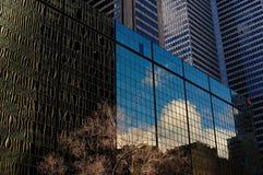 Небоскреб городской Монреаль стоковые изображения
