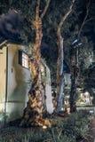 Небоскреб и традиционный стиль старой и новой архитектуры современный Стоковые Изображения