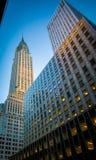 небоскреб york города новый Стоковые Изображения