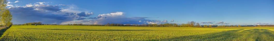 небо ландшафта травы поля предпосылки Стоковые Изображения