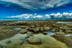 Небо встречает рай Стоковая Фотография
