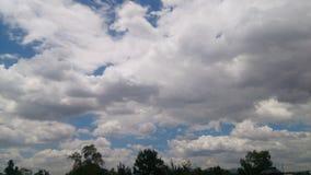 Небо в августе стоковая фотография