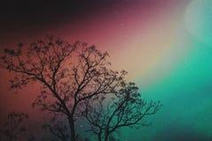 Небо галактики Стоковое Изображение RF