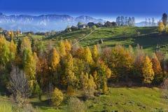 небо гор листва осени голубое глубокое Стоковые Фото