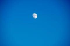 небо голубой луны Стоковые Изображения