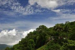 небо джунглей Кубы Стоковое Изображение