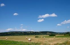 Небо, лес и поля стоковые изображения
