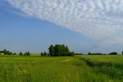 Небо 1 лета Стоковое Изображение RF