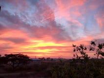 Небо захода солнца стоковые изображения