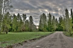 Небо захолустья утра деревьев дороги Стоковое фото RF