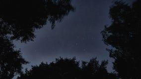 небо звёздное сток-видео