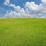 небо зеленого лужка славное Стоковая Фотография