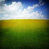 небо зеленого лужка славное Стоковая Фотография RF