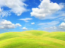 небо зеленого цвета поля облака Стоковое Изображение