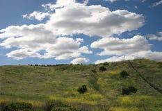 небо зеленого цвета травы фантазии облака Стоковое Изображение