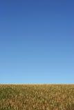 небо земли Стоковое фото RF