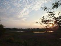 Небо имеет улицы, выравнивая взгляды на полях риса, около красивого красного неба в вечере Когда солнце идет спрятать стоковая фотография