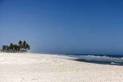Небо и ладонь пляжа Sandy красивые с волнами в salalah океана моря Омана арабском Стоковые Изображения RF