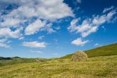 Небо и поле Стоковое Изображение RF