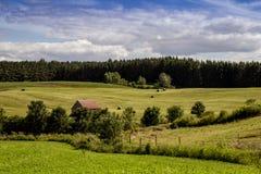 Небо Квебек Канада ландшафта поля сена голубое Стоковые Изображения RF
