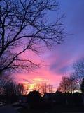Небо конфеты хлопка Стоковое Изображение