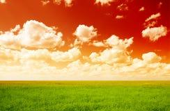 небо красного цвета льна поля стоковое фото rf