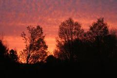 небо красного цвета утра Стоковое Изображение RF