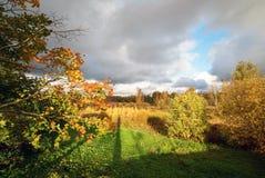 небо ландшафта травы дня предпосылки осени красивейшее солнечное Стоковые Изображения RF