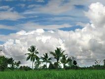 небо ландшафта Стоковое Фото