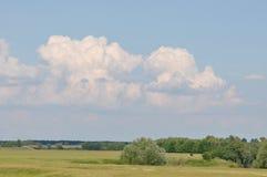 небо лужка облаков зеленое Стоковое фото RF