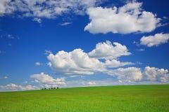 небо лужка облаков зеленое Стоковое Изображение