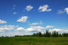 небо лужка стоковые изображения rf