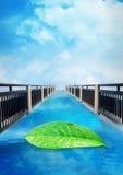 Небо моста голубое, предпосылка природы листьев, плакат Стоковое фото RF