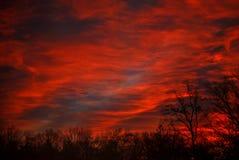 Небо на огне! Стоковое Фото