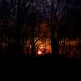 Небо на огне Стоковые Изображения