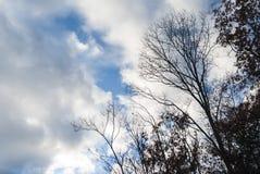 Небо на парке штата пограничной полосы Стоковые Фотографии RF