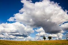 Небо над полем Стоковые Фотографии RF