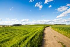 небо дороги поля облаков Стоковые Изображения