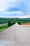 Небо дороги фермы чая голубое Стоковое Изображение RF