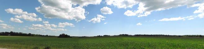 небо панорамы лужка стоковое изображение rf