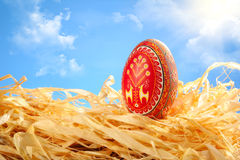 небо пасхального яйца предпосылки покрашенное Стоковое Фото